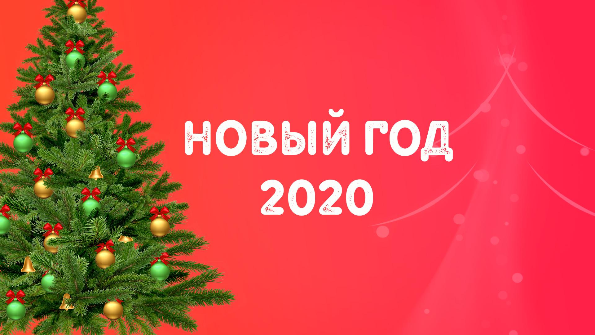 Новый год в эко-отеле Актёр Руза